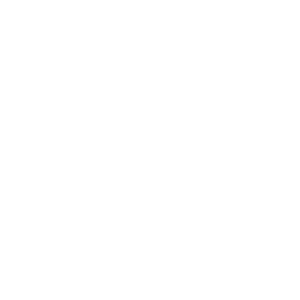 NorthPoint International Seal